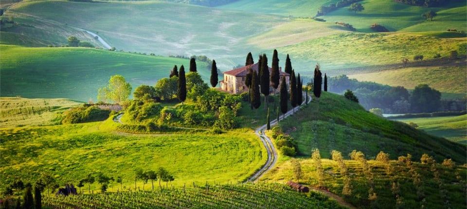 Lush Tuscan gardens