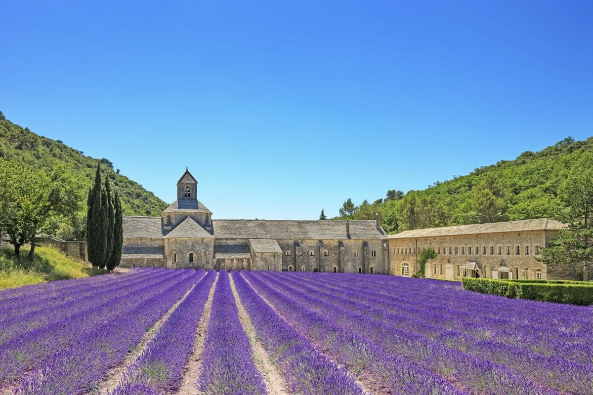 Day trip to Provence