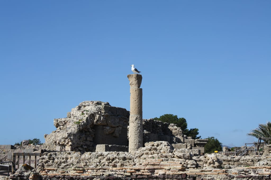 Roman ruins of nearby Nora